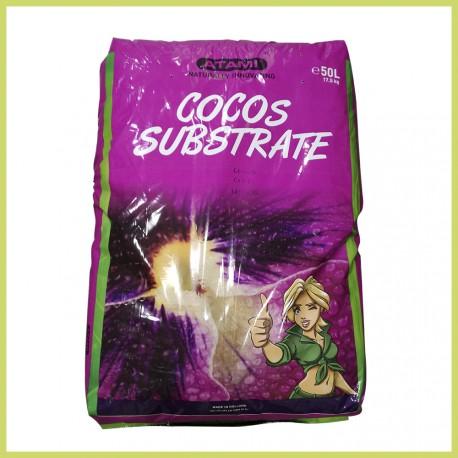 Coco sustrato - ATAMI BCUZZ