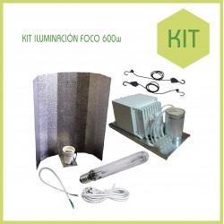 Kit armario 120 x 120 - Foco 600 w ECO - Tierra