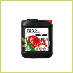 Bloom A - PRO XL