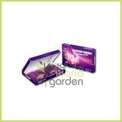Blossom Powder - HORTIFIT