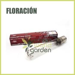 Bombilla Pure Light - floración